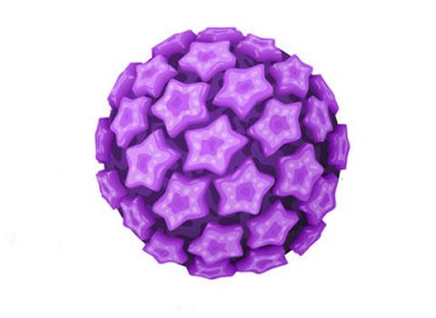 ¿Qué es el HPV Genital?