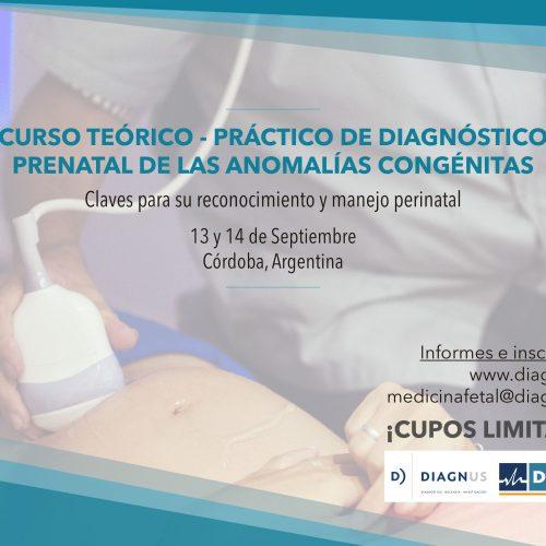 Curso Teórico Práctico de Diagnóstico Prenatal de las Anomalías Congénitas
